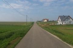 Camino 03