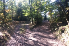Camino 16